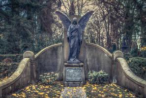 Angel by enaruna