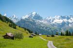 The Jungfrau Mountain