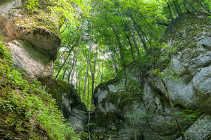 Gorge on the Swabian Alb