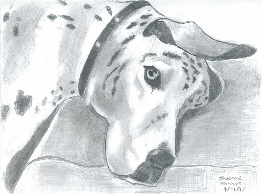 Hunter's Dog by Ronin356