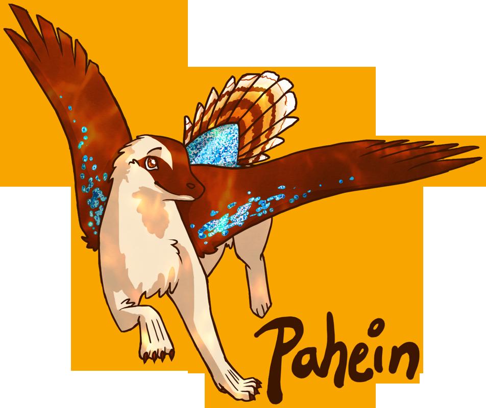 pahein's Profile Picture