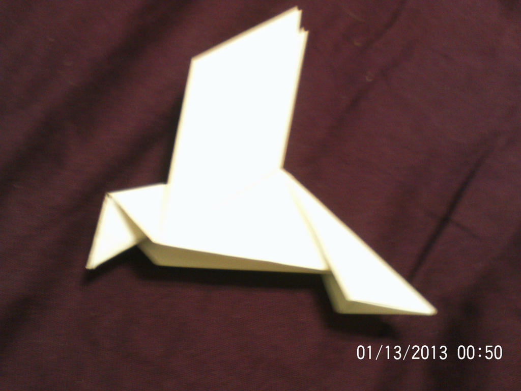 Origami Peace Dove by DaisyTailsMousery on DeviantArt - photo#15