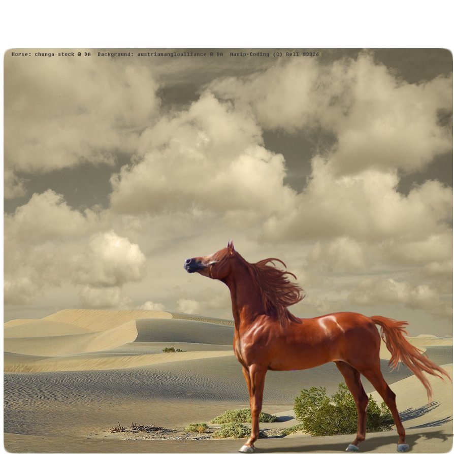 Winds of Heaven by XSiLeNtLy-ScReAmInGX