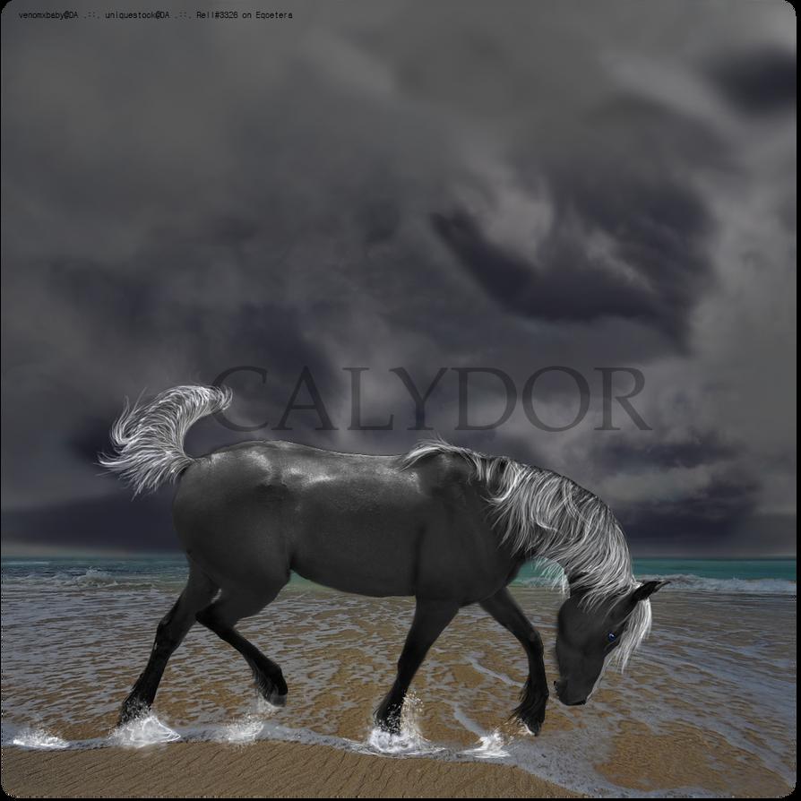 Calydor - Eris by XSiLeNtLy-ScReAmInGX