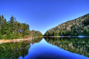 Lac Spruce by boldfrontiers