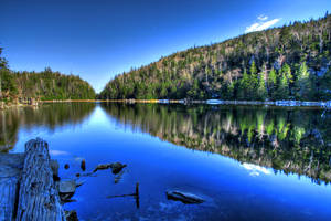 Lac Spruce II by boldfrontiers