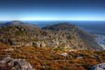 Table Mountain Coast