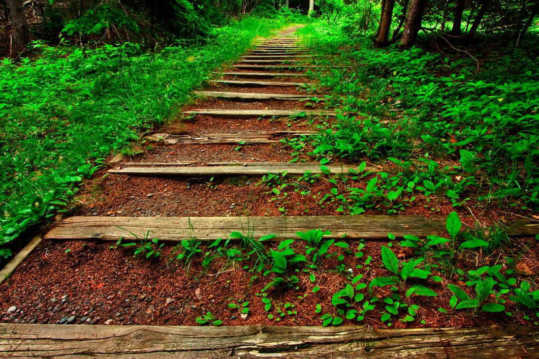 Cabot Trail VI - HDR by somadjinn