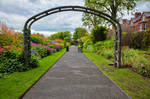 Belfast Botanic Gardens I