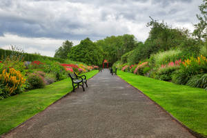 Belfast Botanic Gardens II by boldfrontiers