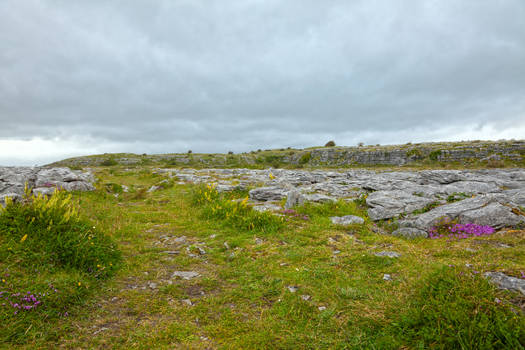 Poulnabrone Landscape I