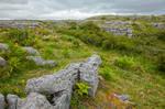 Poulnabrone Landscape II