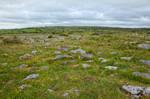 Poulnabrone Landscape III
