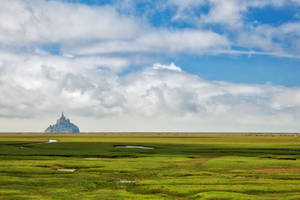 Normandy Fantasy Pasture (freebie)