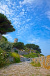 Once Upon a Guernsey Path II