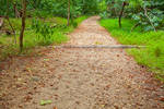 Great Falls Trail - HDR