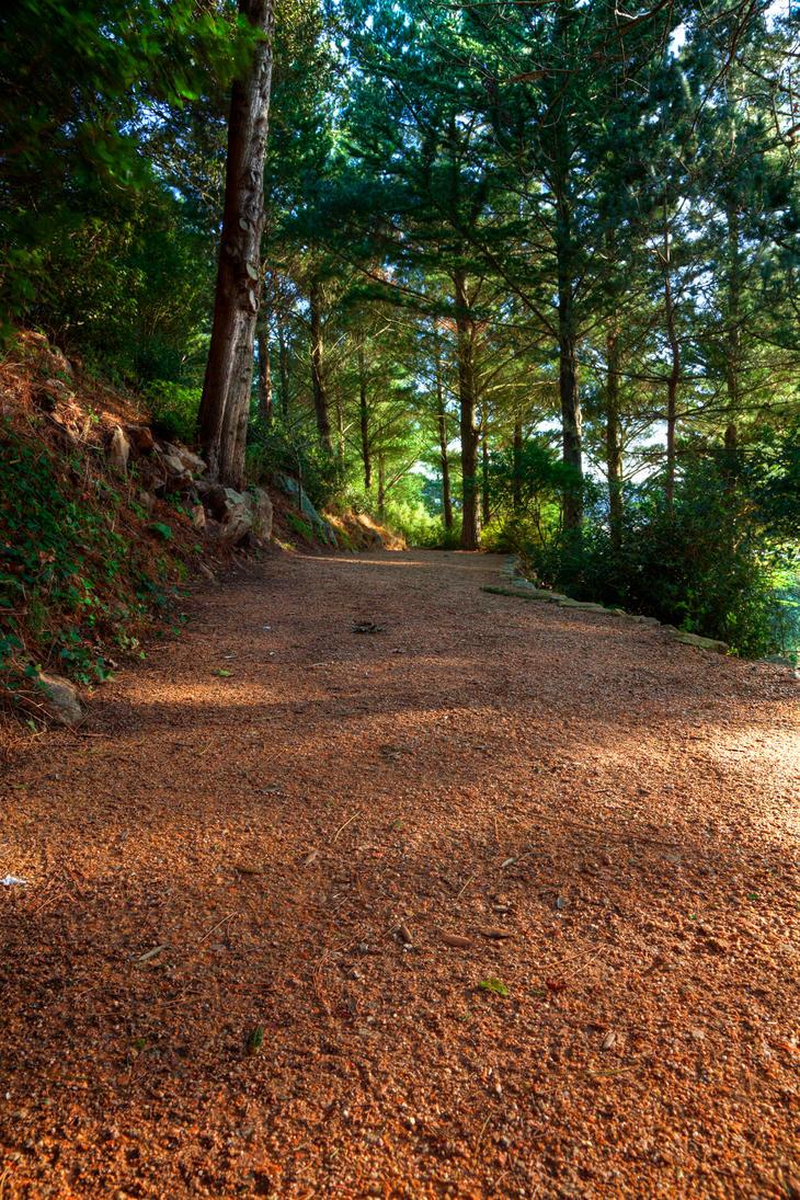 Jersey Trail IV - HDR by somadjinn