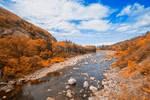 Mackenzies Amber River