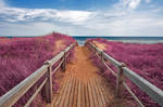 Pink Beach Boardwalk