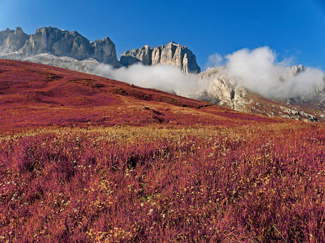 Morning Mists - Autumn Warmth