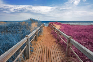 Passion Beach Boardwalk by boldfrontiers