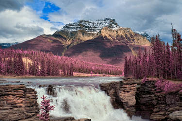 Athabasca Falls - Tickle Me Pink by boldfrontiers