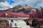 Athabasca Falls - Tickle Me Pink