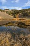 Sonoma Pond Scape II - Exclusive HDR Stock
