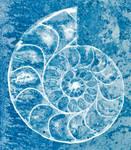 Spiral Ammonite Sketch