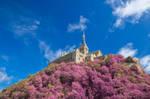 Mont Saint-Michel Abbey - Pink Fantasy
