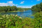 Wellesley Island River (freebie)