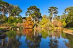 Botanical Gardens Pondscape
