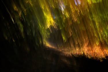 Abstract Forest Streaks (freebie) by boldfrontiers