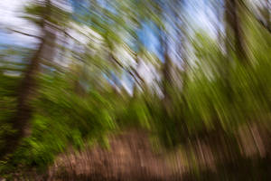 Abstract Forest Streaks II (freebie) by boldfrontiers