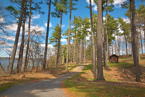 Wellesley Island Camping Trail (freebie) by boldfrontiers