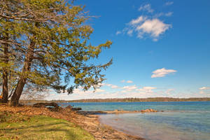 Wellesley Island (freebie) by boldfrontiers