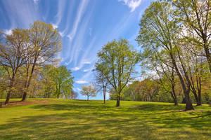 Meadowlark Sky Gardens by boldfrontiers