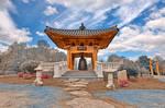 Korean Bell Garden - Winter Blue
