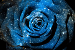 Blue Cosmic Rose (freebie) by boldfrontiers