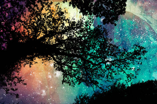 Sam's Organic Universe