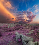 Lavender Poulnabrone Sunset by boldfrontiers