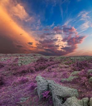 Lavender Poulnabrone Sunset