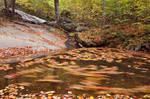 Dark Hollow Whirlpool Fall
