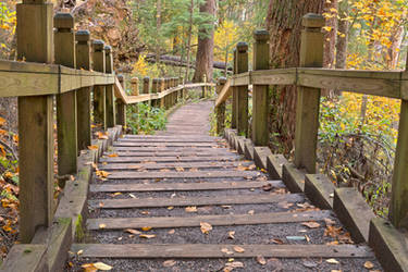 Swallow Fall Stairway