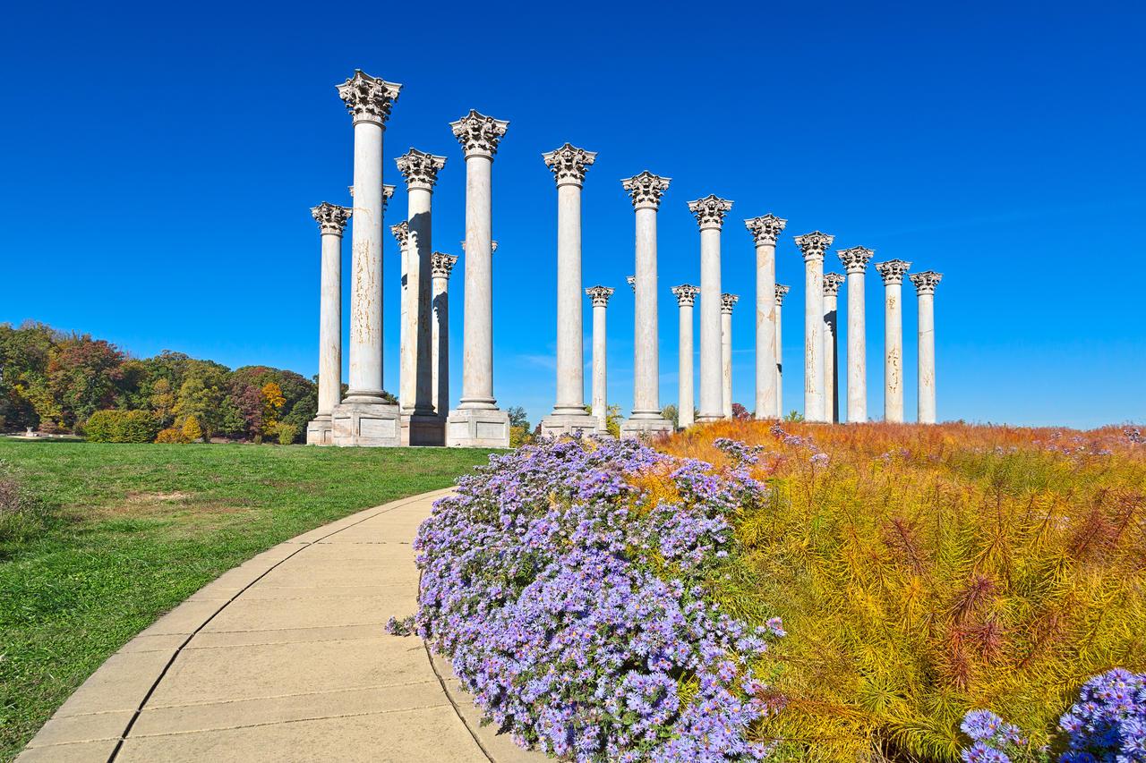 Capitol Arboretum Columns By Somadjinn On Deviantart