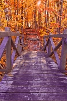 Bridge to Fall Fantasy (freebie)