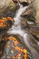 Glen Artney Stream by boldfrontiers