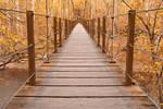 Golden Grove Bridge