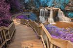 Blackwater Falls - Inca Summer Fantasy