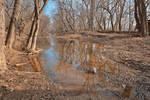 Chisel Branch Creek (freebie)